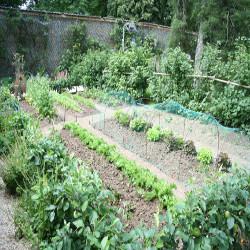 Partager son jardin