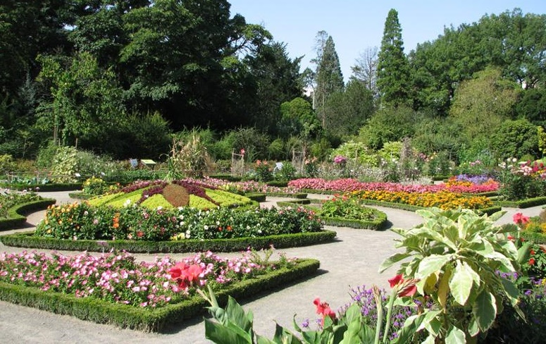 jardin-din