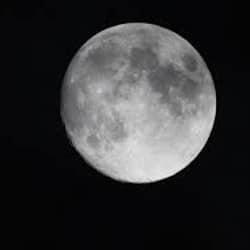 La lune est l'alliée pour le jardinage