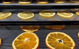 02 raisons de vous équiper en déshydrateur alimentaire